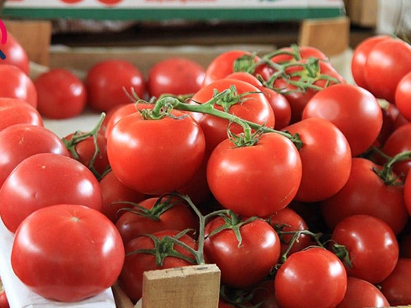 Diqqət: Bu Xəstəliklər Zamanı Pomidor Yemək Olmaz!